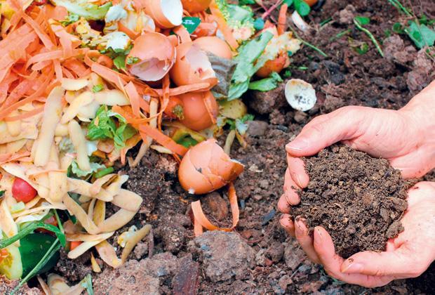 Compost en compost maken: Hoe zelf composteren?