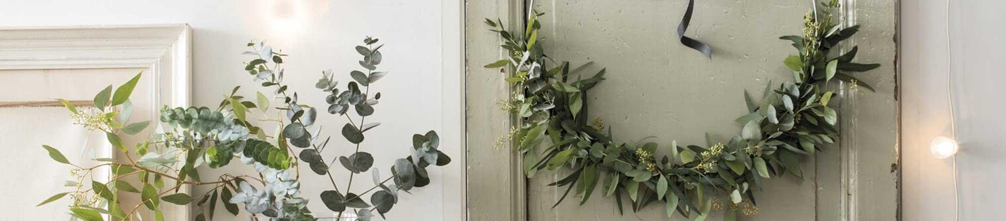 DIY: Eucalyptus krans
