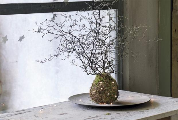 DIY: Kerst kokedama