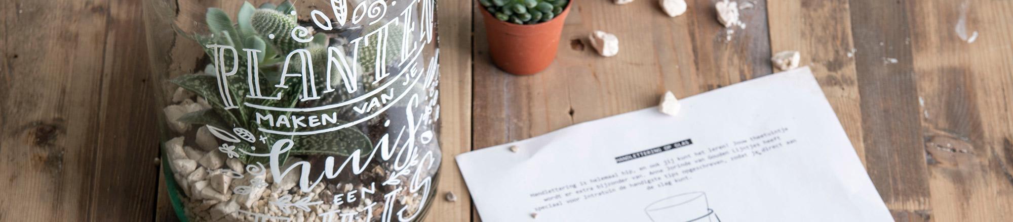 DIY: Handlettering op een terrarium