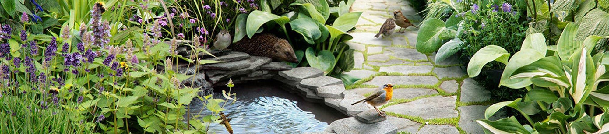 Hoe trek je dieren naar je tuin?