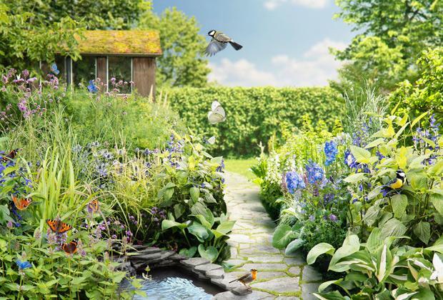 De spontane tuin