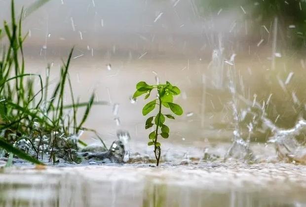 Voorkom wateroverlast in je tuin