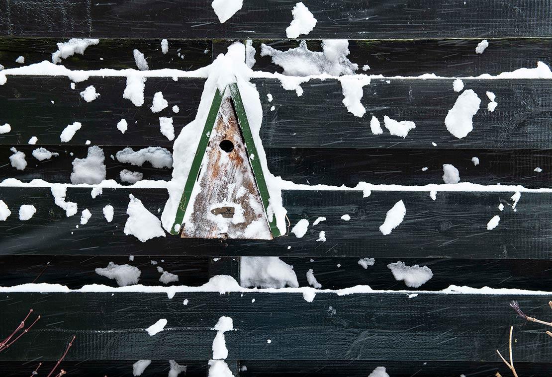 Vogelhuisje in de sneeuw