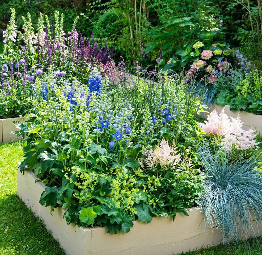 Border met tuinplanten