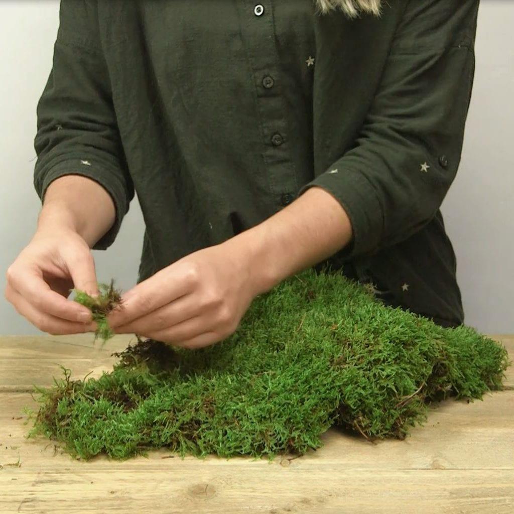 DIY Kerstster met verlichting stap 3: mos plukken
