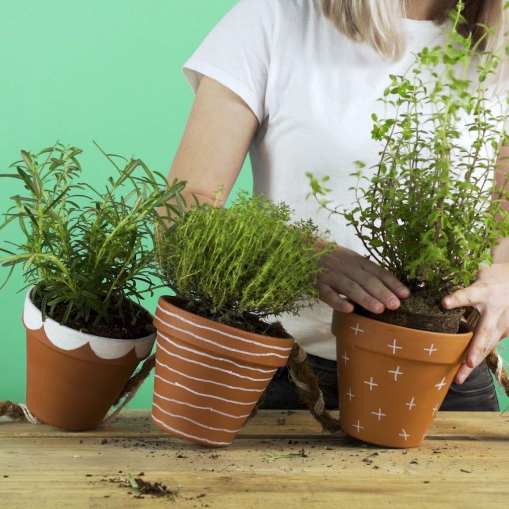 DIY kruidenhanger, stap 4: oppotten