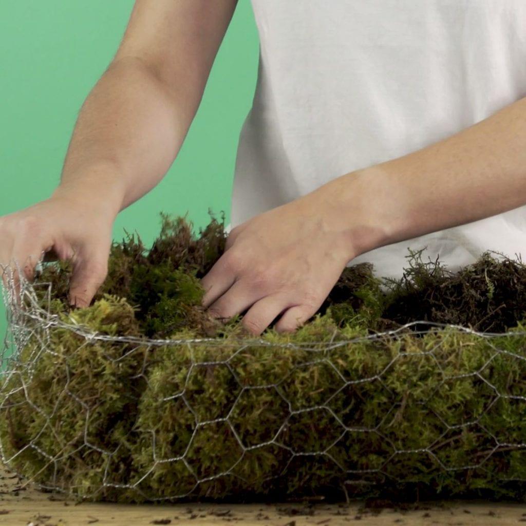 DIY Wilde veldtuin stap 4: Gaas bedekken met mos