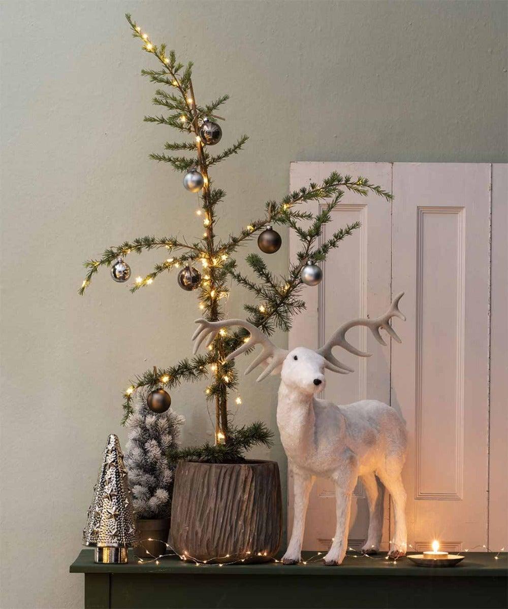 Ceder als kerstboom