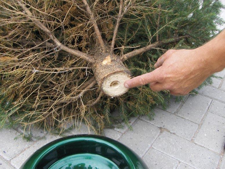 Easyfix kerstboomstandaard