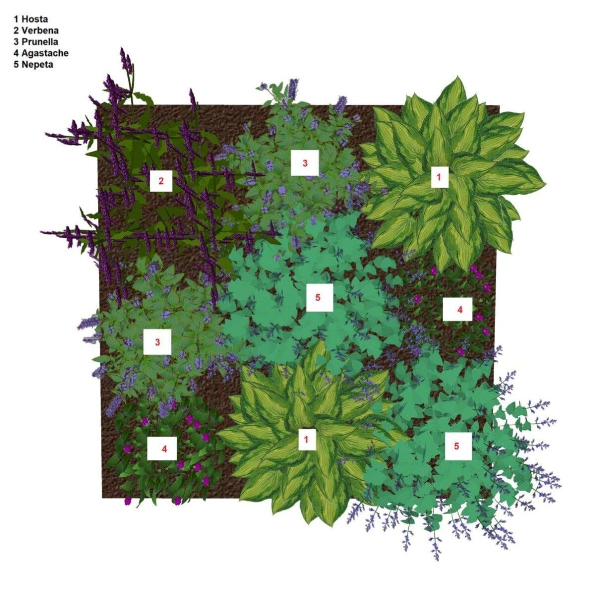 Insectentuin borderplan