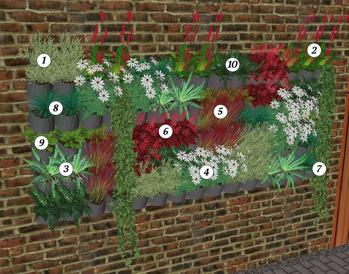 Verticale tuin voorbeeld met nummering