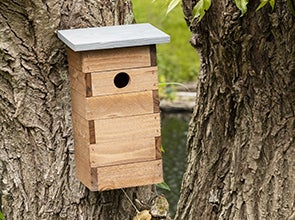 Vogelhuisjes en nestkastjes