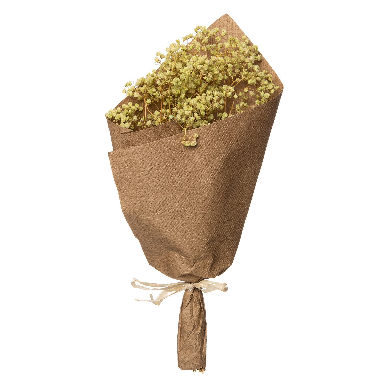 Intratuin gipskruid droogbloemen wit 30 x 15 x 15 cm