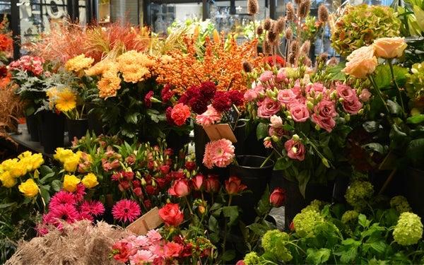 Bloemenverkoop bij Intratuin Lochem